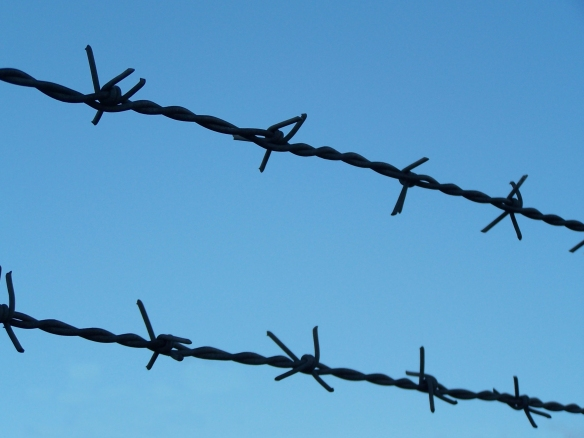 barbed_wire_in_the_sky